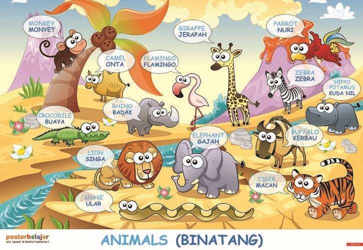90 Koleksi Gambar Hewan Untuk Anak Belajar Gratis